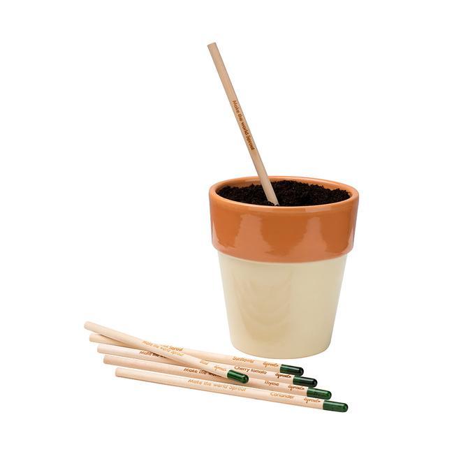 """Ołówek do sadzenia """"Sprout"""""""